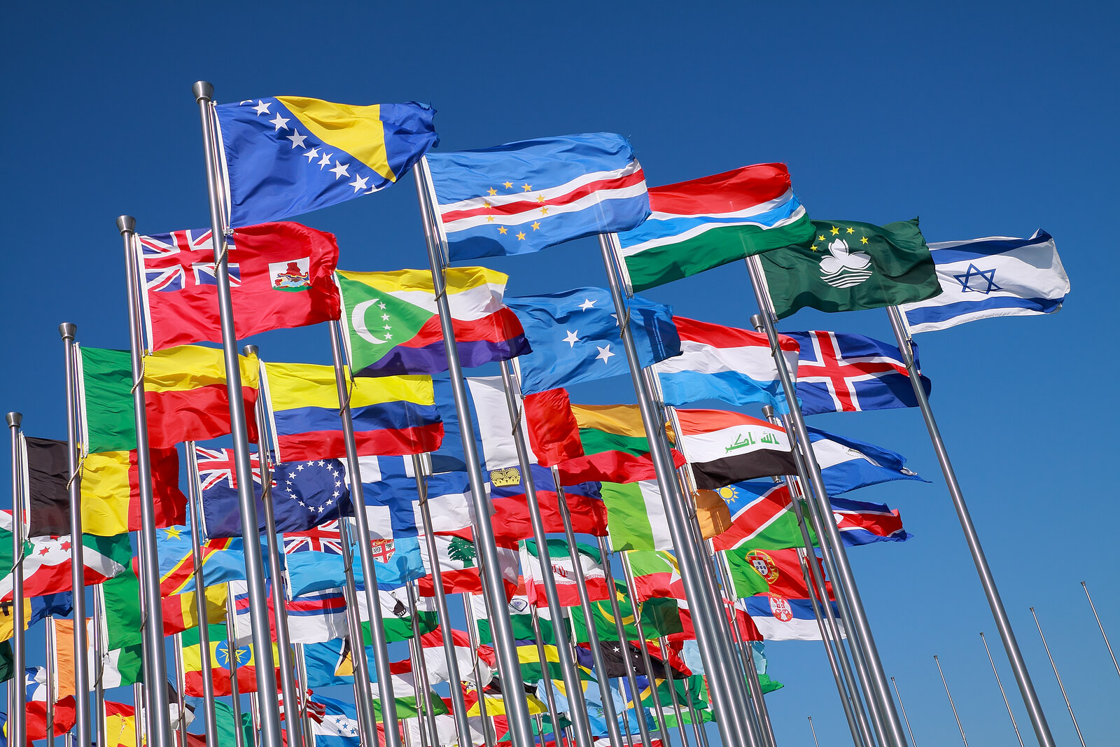 Flags of all nations of the world are flying in blue sunny sky for Commonwealth Future